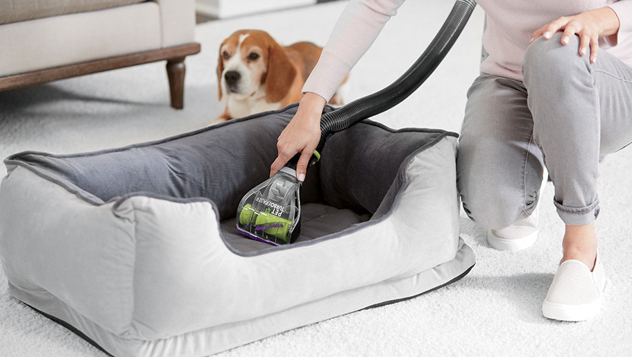 best dog hair removal vacuums